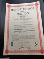 Portugal Acção HIDRO ELÉCTRICA DO CÁVADO - Aandelen