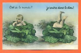 """CPSM PF Bébés Multiples """" C'est ça Le Monde ? Je Rentre Dans Le Chou """" JCP 26 - Groupes D'enfants & Familles"""