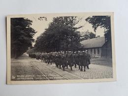 """Ancienne Photo/CP D'un Groupe De Militaires Belges """"Bourg Léopold - Chaussée D'Hechtel"""" - 1935 - Belgique -Caserne/Armée - Leopoldsburg (Camp De Beverloo)"""