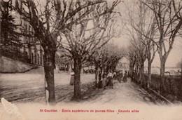 ST GAULTIER - Ecole Supérieure De Jeunes Filles.  Grande Allée  Carte Rare. - France