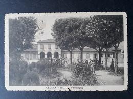 Italie - Italia - 1919 - Carte Postale De Cecina à Torino - TB - Italie