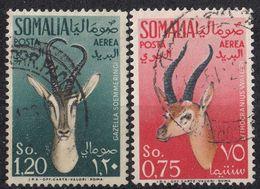 SOMALIA - 1955 - Lotto Di Due Valori Obliterati Posta Aerea Yvert 56/57. - Somalia (AFIS)