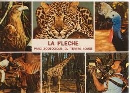 CPM - PARC ZOOLOGIQUE DE LA FLECHE - MULTIVUES - Edition Valoire - Animaux & Faune