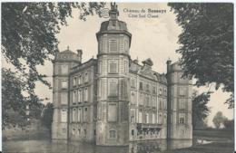 Avelgem - Château De Bossuyt - Côté Sud Ouest - Albert - Edit. E. Vanden Broeck - Avelgem