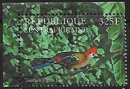 Central Africa - 2001 - Red-crested Turaco (Tauraco Erythrolophus - Coucous, Touracos