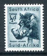South Africa 1954 Wildlife - Wmk. Springbok - ½d Warthog LHM (SG 151) - South Africa (...-1961)