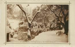13 - MARSEILLE - Carte Photo Du Jardin Zoologique Sous La Neige En 1914 - Otros