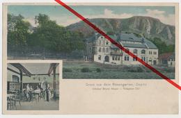 Öpitz Oepitz - Pößneck - Gasthaus Rosengarten - Ca. 1910 - Pössneck