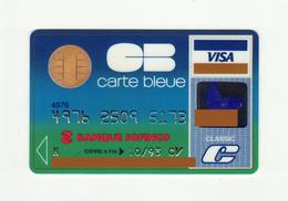 Banque Sofinco FRANCE Carte Bleue VISA Expired 1993 - Geldkarten (Ablauf Min. 10 Jahre)