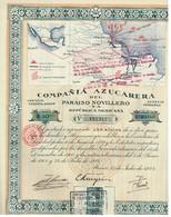 Ancienne Action - Compañía Azucarera Del Paraiso Novillero S.A - Repùblica Mexicana - Titre De 1924 - Industrie