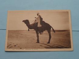 TOUGGOURT Méhariste Au Désert ( 1121 - Mme DEWAMME Librairie Des Touristes ) > ( Voir Photo ) ! - Algérie
