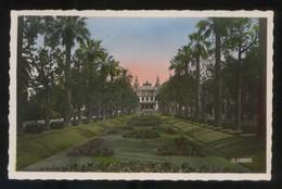 Monte-Carlo. *Jardins Du Casino* Ed. La Cigogne Nº 1537. Nueva. - Casino