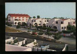 B7691 CERENOVA COSTANTICA - FRAZIONE DI CERVETERI - PIAZZA ROMEO FAGNANI - Autres Villes