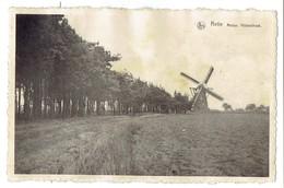 Retie - Molen Hulsestraat - 1951 - Retie