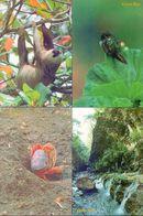 Costa Rica 10 Fine  Post Cards - Fauna, Flora And Nature. - Costa Rica