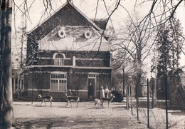 Beerse Dierenpark - Beerse