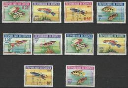 """Guinée YT 177 à 186 """" Poissons """" 1964 Neuf** - Guinea (1958-...)"""