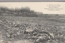 Bataille De La Marne 6 Au 12 Sept 1914 MAURUPT (Marne) Champ De Bataille à L'est Du Chemin De Pargny Sur Saulx - Weltkrieg 1914-18