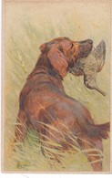 Hunting Jagd Chasse  Setter Schnepfe   Woodcock  Becasse  Snipe Signe K.W.  Oiseaux  Chien  Cpa. - Hunting