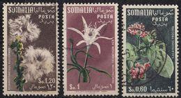 SOMALIA - 1955 - Lotto Di Tre Valori Obliterati: Yvert 240/242. - Somalia (AFIS)