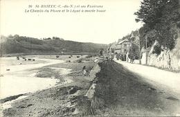 SAINT-BRIEUC  -- Le Chemin Du Phare Et Le Légué à Marée                                        -- Nouvelles Galeries 20 - Saint-Brieuc