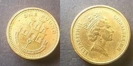 GIBRALTAR. MONEDA AÑO 1991. ONE POUND. MONTIS INSIGNIA CALPE. SIN CIRCULAR. - Gibraltar