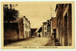 4 - FEREL (Morbihan). - Route De Camoël-Pénestin - France