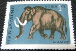 Bulgaria 1971 Prehistoric Animals Mammuthus Primigenius 1 Ct - Used - Gebraucht