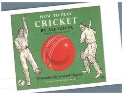 (374) How To Play Cricket - Cricket