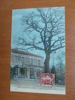 VILLIERS Sur MARNE Le Bois De Gaumont. Restaurant Du Vieux Chene.  94 Val De Marne - Villiers Sur Marne