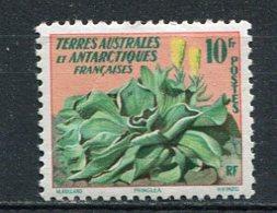 TAAF  Yv. N° 11 *  10f  Flore Cote 11 Euro TBE - Terres Australes Et Antarctiques Françaises (TAAF)