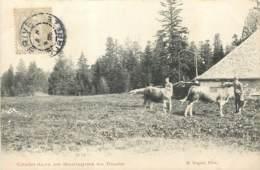 25 - Chalet Dans Les Montagnes Du Doubs En 1905 - Edit Nogret - Autres Communes