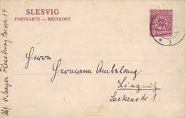 SLESVIG ENTIER PLEBISCIT 1920 - Autres - Europe