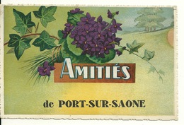 70 - AMITIES De PORT SUR SAONE - Other Municipalities