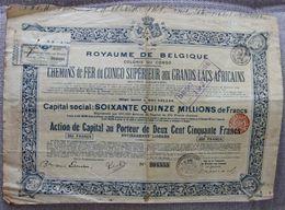 BELGIUM CONGO AND GREAT LAKES RAILWAY 1902 - Chemin De Fer & Tramway