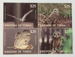 Kingdom Of Tonga 2012; Fauna Birds Owls; MNH Set; Huge Value! - Tonga (1970-...)