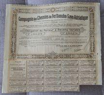 AUSTRIA ACCION COMPAÑIA DE FERROCARRILES DANUBE SAVE ADRIATIQUE 1923 RAILWAY - Ferrocarril & Tranvías