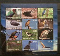 Tonga 2012 Fauna Birds Parrot Duck Owl Kingfisher MNH** Huge Value!! - Tonga (1970-...)