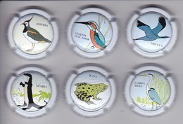 SERIE COMPLETA DE 6 PLACAS DE CAVA DE LA FAUNA DEL CINCA (CAPSULE) RANA-FROG-PAJARO-BIRD - Placas De Cava