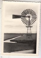 Friesland - Windturbine - éolienne - 1953 - Foto Formaat 7.5 X 10.5 Cm - Photos