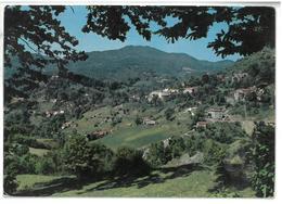 Toscana Badia Prataglia (Arezzo) Stazione Climatica Panorama Viaggiata 1968 - Italia