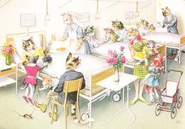 CATS - HOSPITAL - Animaux Habillés
