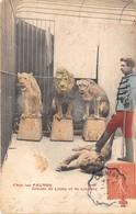 CHEZ LES FAUVES- GROUPE DE LIONS ET DE LIONNES - Lions