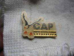 Pin's CAP (Centre D'activités De Plongée) De La Ville De TREBEURDEN Dépt 22 - Diving