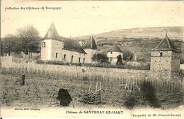 21 PROPRIETE DE Mr BLEUROT LAROSE CHATEAU DE SANTENAY LE HAUT - Other Municipalities