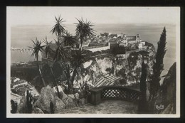 *Le Rocher De Monaco, Vu Des Jardins Exotiques* Ed. Rella Nº 604. Nueva. - Jardín Exótico