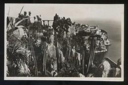 *Le Rocher De Monaco, Vu Des Jardins Exotiques* Ed. Rella Nº 603. Nueva. - Jardín Exótico