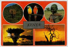 KENYA     VEDUTE      (VIAGGIATA) - Kenia