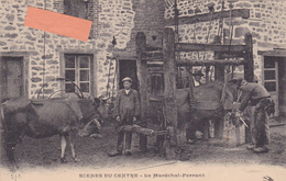 19-SCENE Du CENTRE- Le MARECHAL-FERRANT- GROS PLAN De La FORGE- - Non Classés