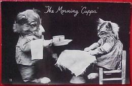 Cpa CHAT Humanisé , AU SALON De THE, CHIEN SERVEUR , CHATTE Photo Réelle  DRESSED CAT AND DOG THE MORNING CUPPA - Animaux Habillés